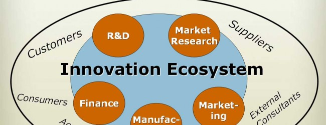 Islam Analysis (24): Building a healthy innovation 'ecosystem'