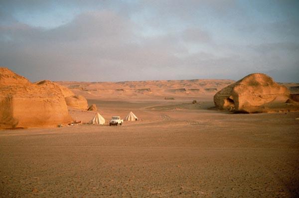 University of Michigan camp in Wadi Hitan, Egypt (image courtesy Professor Gingerich)