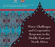 Report: Water Challenges and Cooperative Response in the ME&NA