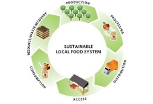 Changing Dynamics of Food Security