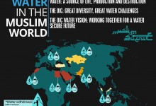 Water in the Muslim World