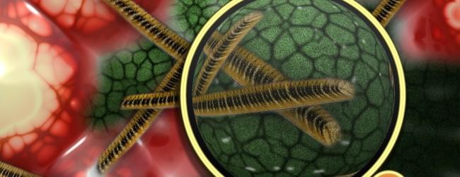 Portable lamp kills antibiotic-resistant bacteria